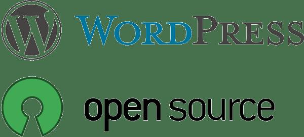 Webdesign Den Haag WordPress Expert